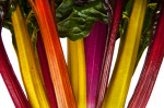colorful-swiss-chard-stalks-2_thumb